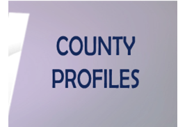 County-Profiles-Google-Drive