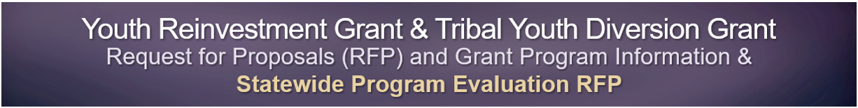 Youth-Reinvestment-Grant-&-Tribal-Youth-Diversion-Grant-RFP-and-Grant-Program-Information
